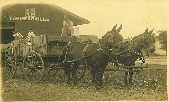 train-station-with-mules